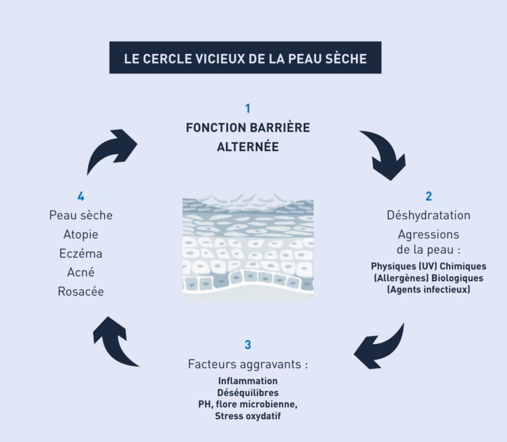 peausèche-altération-barrière-cutanée-atopie-eczéma-deshydratation