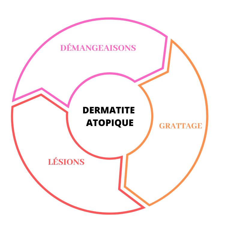 cercle-viscieux-dermatite-atopique-démangeaison-grattage-lésions